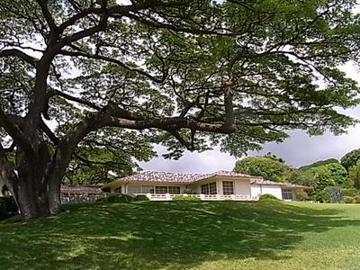 Hawaii_life_247