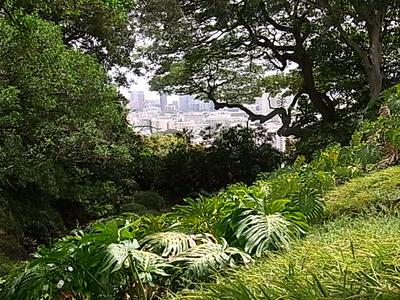 Hawaii_life_272